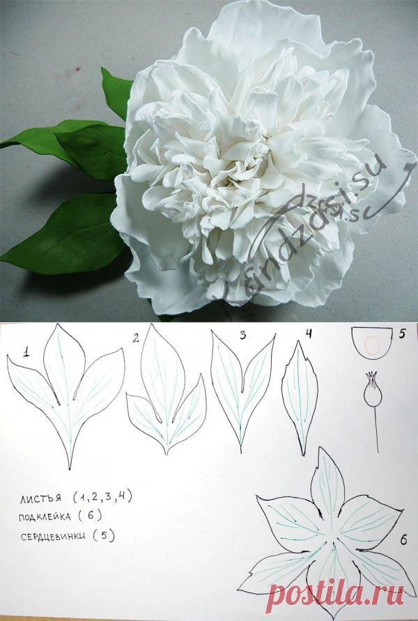 Цветы из фоамирана своими руками: шаблоны, выкройки и схемы