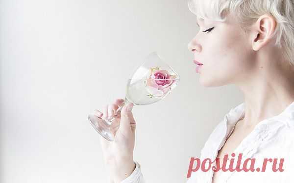 Бокалы для вина - какие и когда?