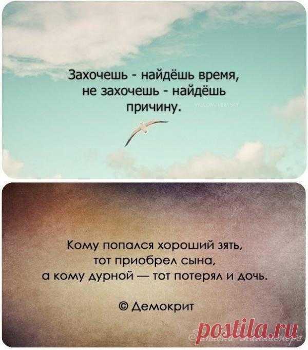 Чем примитивнее человек, тем более высокого он о себе мнения. (Эрих Мария Ремарк). Цитаты великих людей.