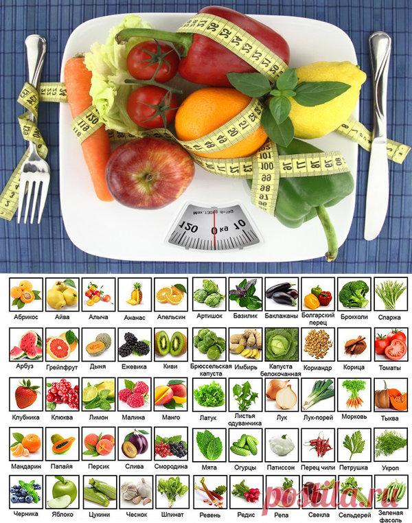 Продукты с отрицательными калориями: ешьте и худейте! | Школа Снижения Веса | Яндекс Дзен