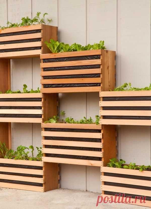 Современный, компактный вертикальный овощной сад — DIYIdeas