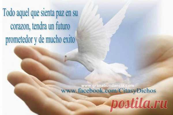 Paz Mental Frases Buscar Con Google Espiritual Postila