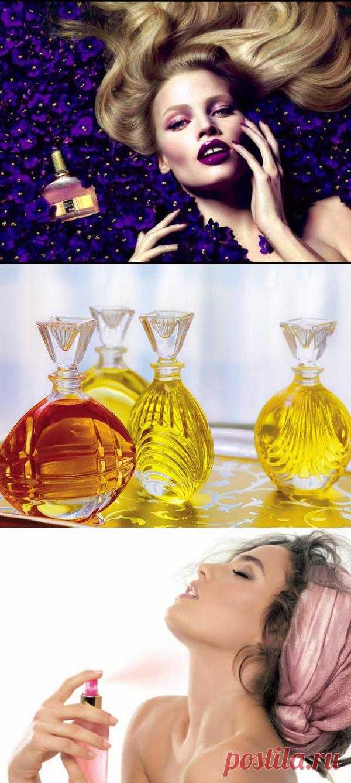 Выбираем парфюм по гороскопу