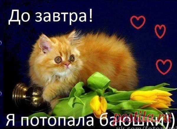 https://img14.postila.ru/resize?w=600&src=%2Fdata%2F31%2F33%2Fa6%2F2a%2F3133a62a665ef1d026a94dc678ebfb79f956a99e80656a9fd514592fda382b52.jpg