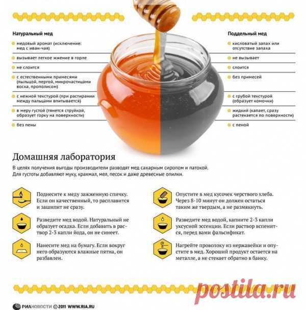 как выбрать мёд