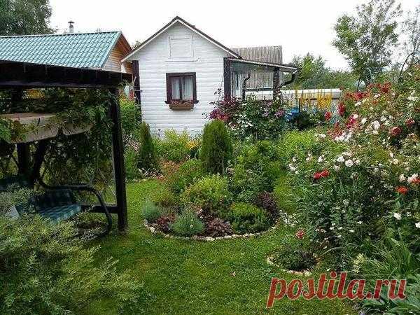 Перевоплощение огорода в цветущий райский сад - усладу для глаз и души
