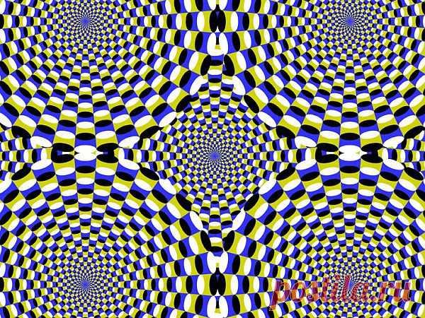 Illusion | Illusion