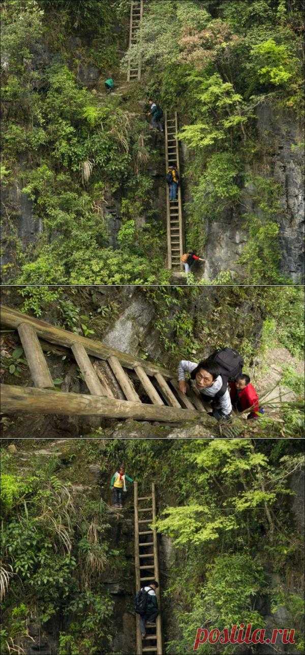 Этой дорогой каждый день ходит на занятия в школу местная детвора. Это единственная дорога из небольшой горной деревни на юге Китая в провинции Хунань