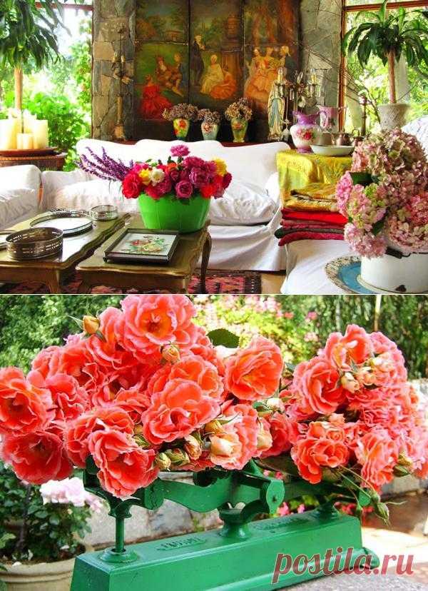 Приносим цветы в дом