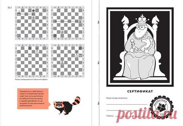 Тетрадь можно использовать для обучения в любом возрасте. Если вы еще не освоили шахматы, пройдите этот путь вместе со своим малышом.