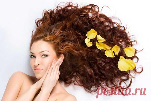 Уход за волосами в домашних условиях – 7 секретов красоты | Господарка.Ru