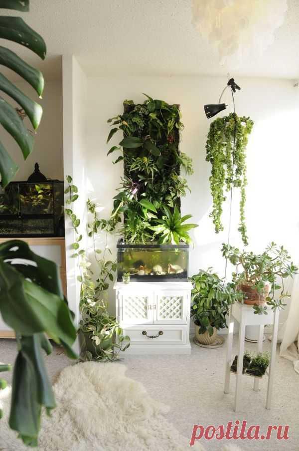 Панно из растений