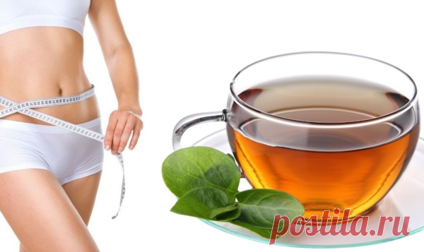 Чай, от которого я похудела на 10 килограммов! | ЛАЙФХАК: ХУДЕЕМ! | Яндекс Дзен