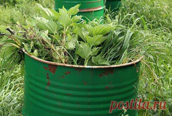 Как приготовить травяной квас для огорода и сада? Шикарный урожай не заставит себя долго ждать! | Дачная страна | Яндекс Дзен