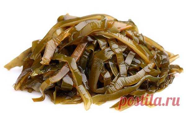 Сравнение пользы и вреда морской капусты: лечебные свойства продукта В чем польза, а в чем вред морской капусты для организма. Какие лечебные свойства есть у ламинарии, как ее правильно готовить и включать в рацион питания.