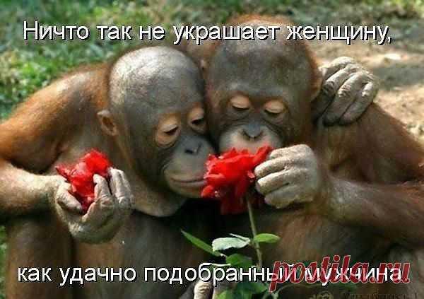 У нас любовь ! А у вас..?