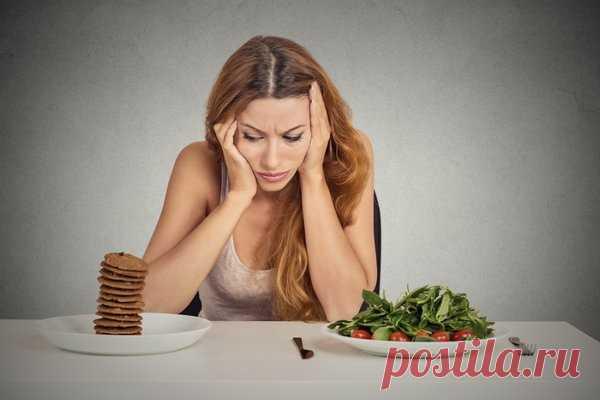 Как похудеть без диет? Вся правда о диетах для похудения   Похудение и стройная фигура   Яндекс Дзен