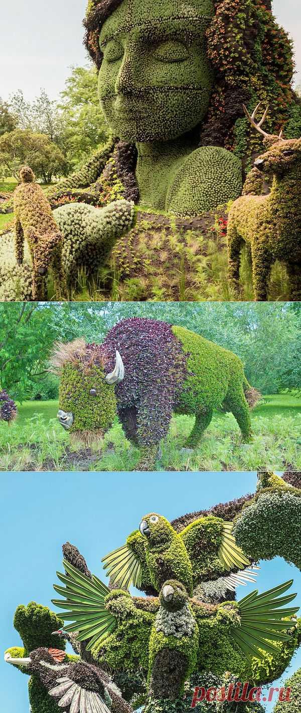 Фигурная стрижка кустов - удивительное искусство садоводства | Живой фотоблог