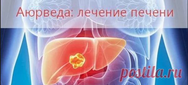 Аюрведическое лечение болезней. Болезни печени | Лакшми маркт | Яндекс Дзен