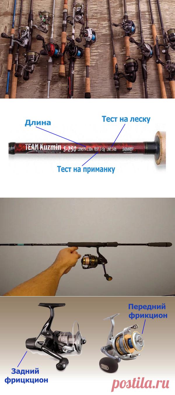 Как выбрать спиннинг начинающему рыболову   Охота и Рыбалка   Яндекс Дзен