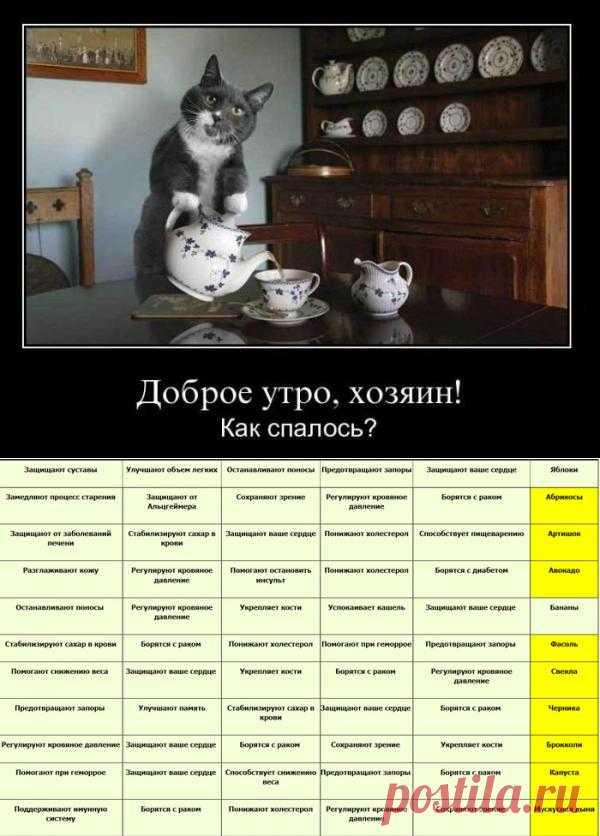 Блоги@Mail.Ru: Полезно знать! Здоровье и продукты