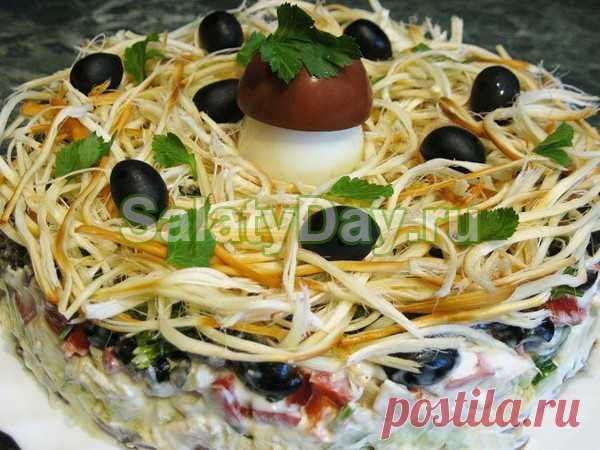 Салат с сыром косичка - не только фосфор и кальций, но и невероятный вкус: рецепт с фото и видео