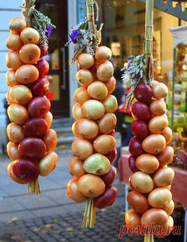 Луковый рынок немецкого города Веймар.