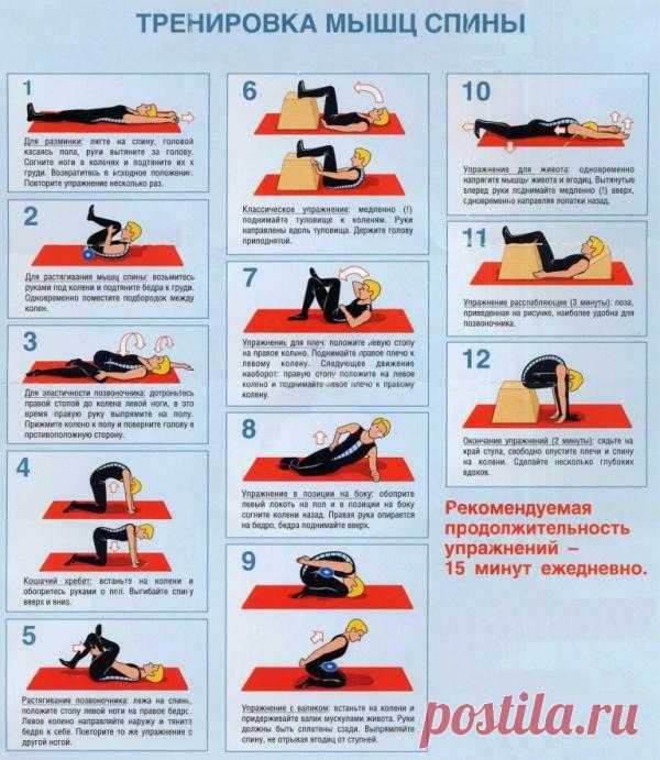 Тренировка мышц спины. Ежедневно 15 минут