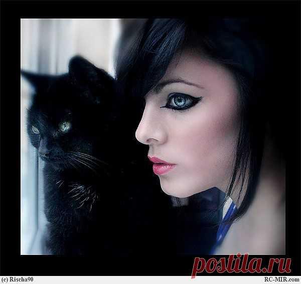 Кошка и девушка.
