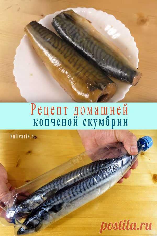 Рецепт домашней копченой скумбрии - Кулинария