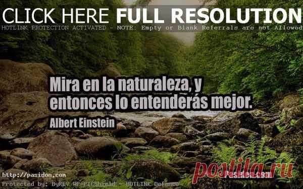Frases De Reflexion Sobre La Naturaleza Para Pensar Lo Más