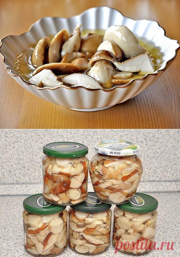 Мариновать белые грибы в домашних условиях фото