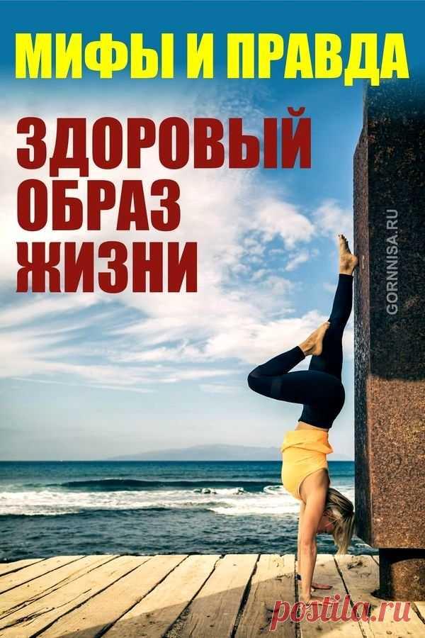 Мифы и правда о здоровом образе жизни | ГОРНИЦА | Здоровье