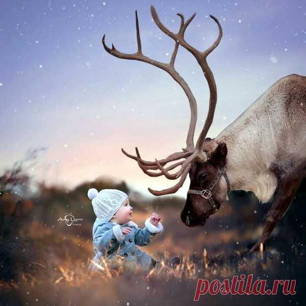 Дети и животные, ч.10 – Блог. Run, пользователь Марина Николаева   Группы Мой Мир