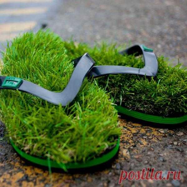 Любите чувствовать нежную травку под ногами ? тогда эти шлёпанцы как раз то, что нужно. За эко - обувь 50$ на thefancy.сom