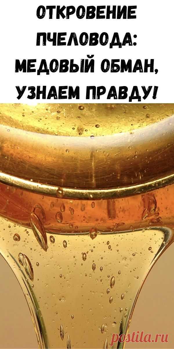 Откровение пчеловода: Медовый обман, узнаем правду! - Советы на каждый день
