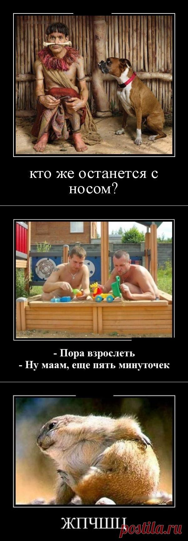 Смешные демотиваторы / Приколы