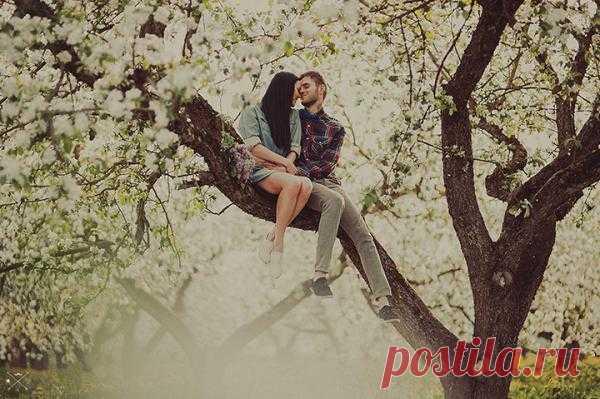 Цветущий сад: love-story Даши и Димы - WeddyWood