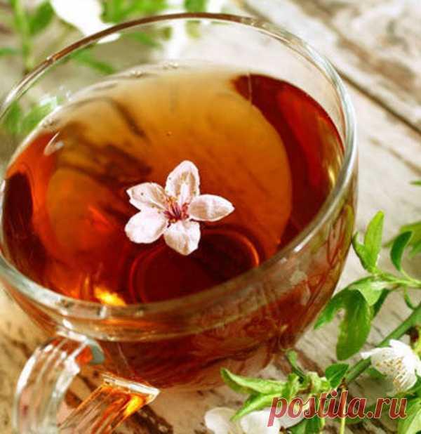 О пользе травяных чаев.