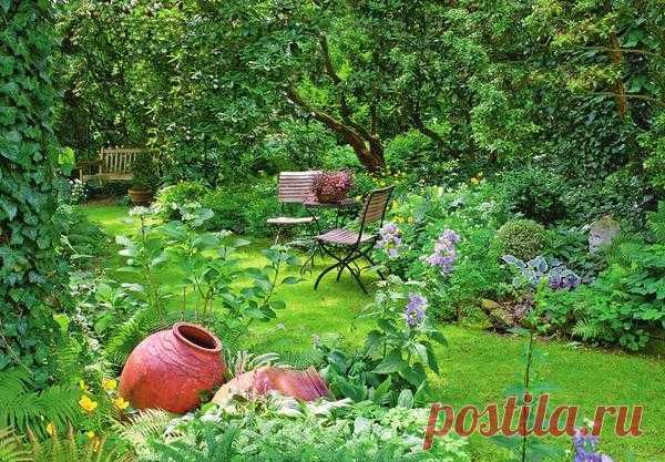 12 ideas del jardín en la sombra