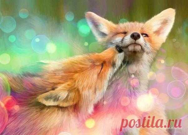 Влюбленные лисички