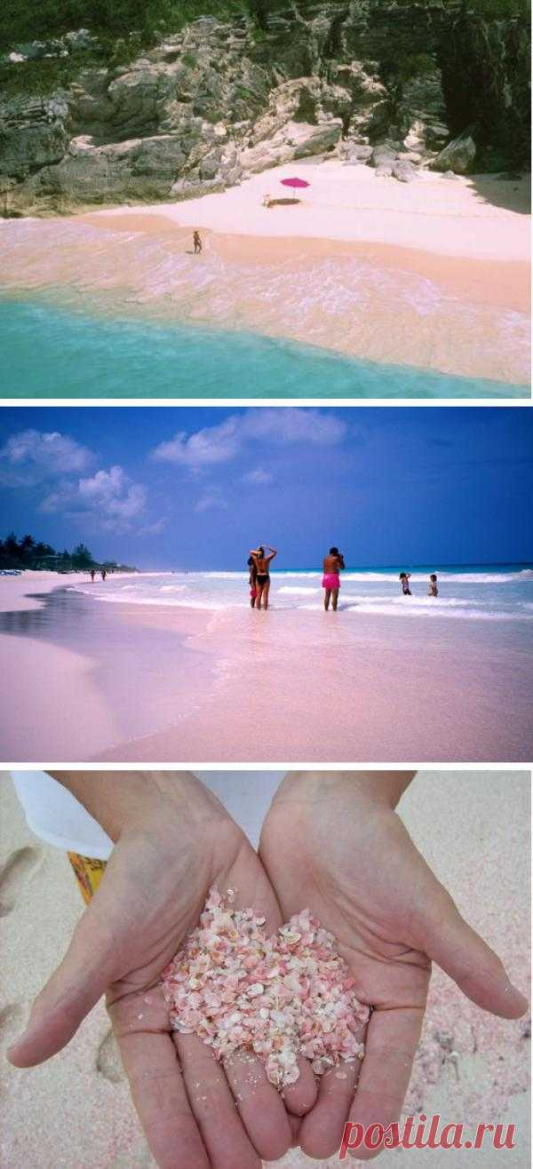 Пляж Розовых песков. Один из самых необычных пляжей в мире. Вечером на закате песок и вода приобретают розовый оттенок благодаря живущим на пляже мелким каралловым насекомым, защитные раковины которых имеют розовый цвет. Остров Харбор, Багамские острова