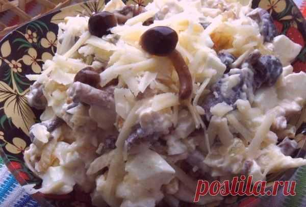 Салат с курицей и маринованными грибами - Пошаговый рецепт с фото своими руками Салат с курицей и маринованными грибами - Простой пошаговый рецепт приготовления в домашних условиях с фото. Салат с курицей и маринованными грибами - Состав, калорийность и ингредиенти вкусного рецепта.