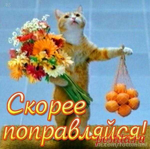 Прикольная картинка поправляйся, открытке цветы красивые