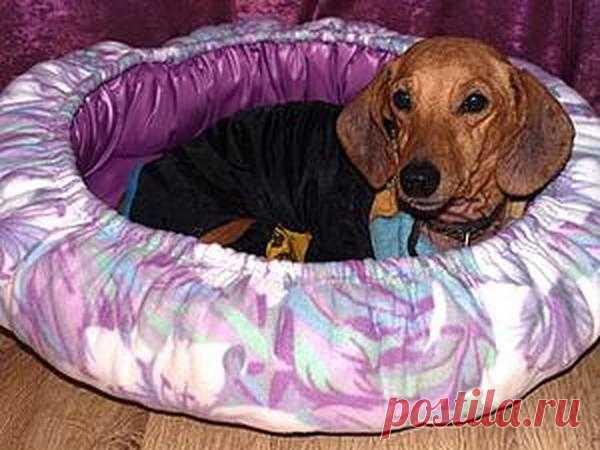 Мастер-класс : Делаем лежанку для собаки   Журнал Ярмарки Мастеров