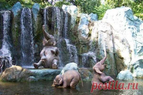 Доволен как слон!:)