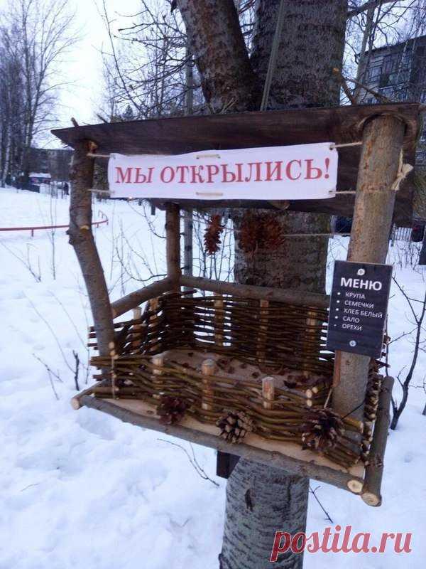 Bistro for birds