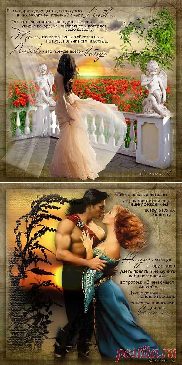 Люди дарят друг другу цветы, потому, что в них заключен истинный смысл Любви. Тот, кто пытается завладеть цветком, увидит вскоре, как он завянет и потеряет свою красоту, а ТОТ, кто всего лишь любуется им на лугу, получит его навсегда. ЛЮБОВЬ-Это, прежде всего, свобода. Цитаты П. Коэльо.