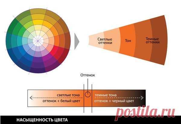 Как идеально подбирать цвета в одежде на основе теории цветового круга