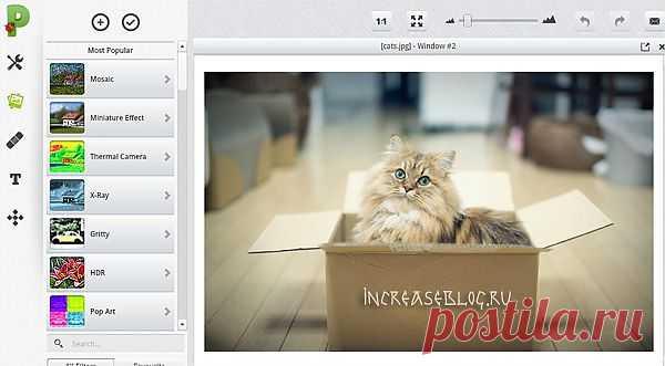 Picadilo - графический редактор | Настройка программ